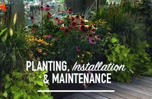 chelsea garden centers employees are well known specialists in landscape installation of rooftop terrace and courtyard gardens we handle landscaping and - Chelsea Garden Center